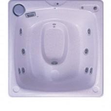 SPA бассейны и гидромассажные ванны SPA бассейн USSPA Bob